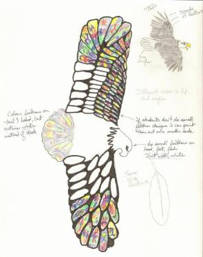 Sketch for student feather idea, by Tiana.