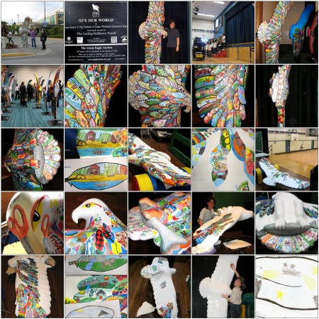 Tiana Kaczor's Eagle Mosaic of pictures on Flickr