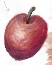 This apple had each layer of watercolour dry before the next layer or colour was painted on top and thus you can see some of the brush strokes and it doesn't blend like the wet on wet apple shown above.